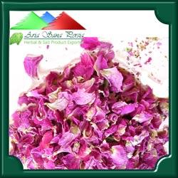 Pink Rose Petal - Iran Medical Herb Exporter