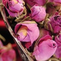 Red Rose - Iran Medical Herb Exporter