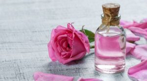 Rose Water Extract, Iran Rose Water, Iranian Rose Water, Persian Rose Water, Exporting Iran medical herb